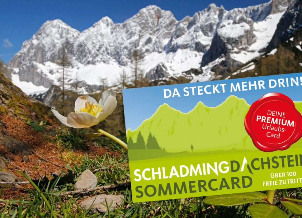 Image: Die Sommercard bietet zahlreiche kostenlose Attraktionen und Vergünstigungen und ist im Preis includiert.